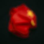 C004 China, 2008